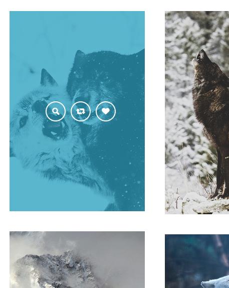Premier - A Responsive Tumblr Theme