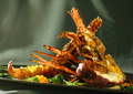 Crayfish plate - PhotoDune Item for Sale