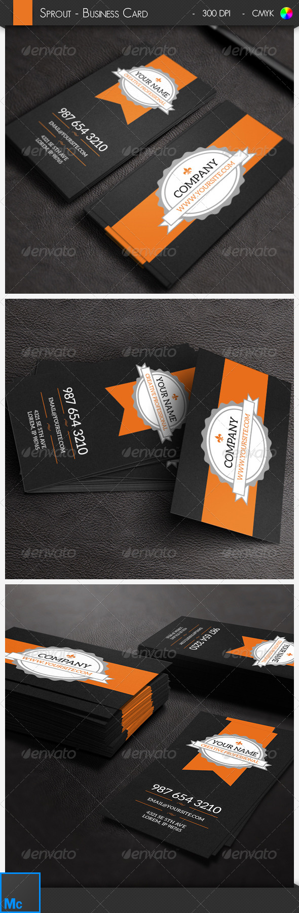 GraphicRiver Sprout Retro Business Card 6533268