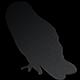 BlackOwlOnline