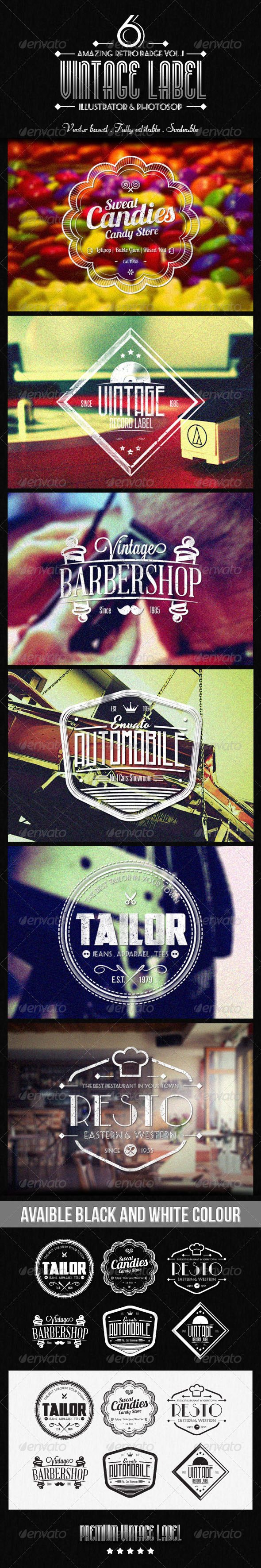 GraphicRiver Vintage Label vol.2 6538744
