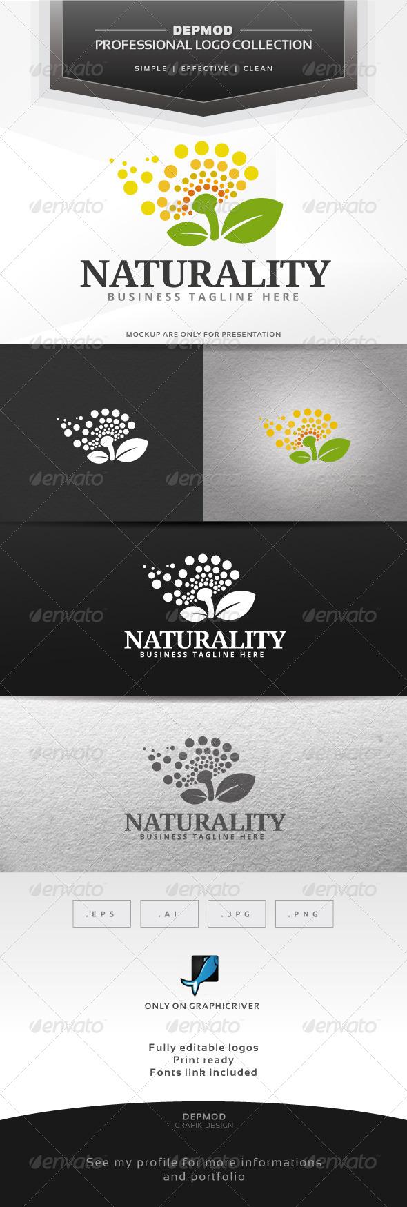 GraphicRiver Naturality Logo 6544868