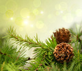 Pine cones on branches with holiday background - PhotoDune Item for Sale