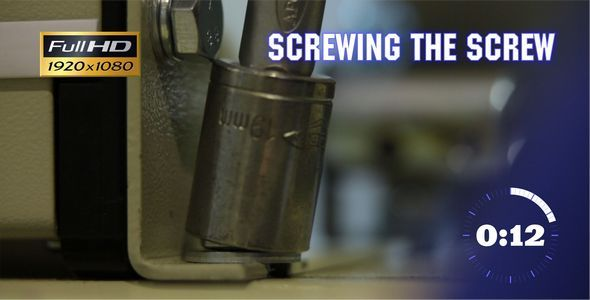 Screwing the Screw 2