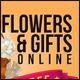 Online Gift Shop Banner Set II