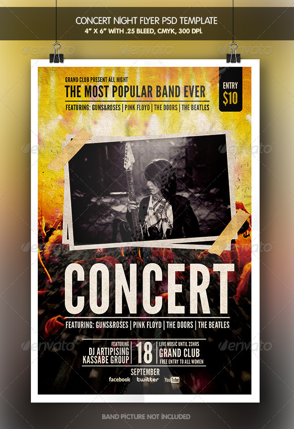 GraphicRiver Concert Night Flyer 6556439