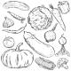 Set of Vegetables - GraphicRiver Item for Sale