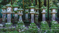 Stone Lanterns at Kasuga Taisha in Nara - PhotoDune Item for Sale