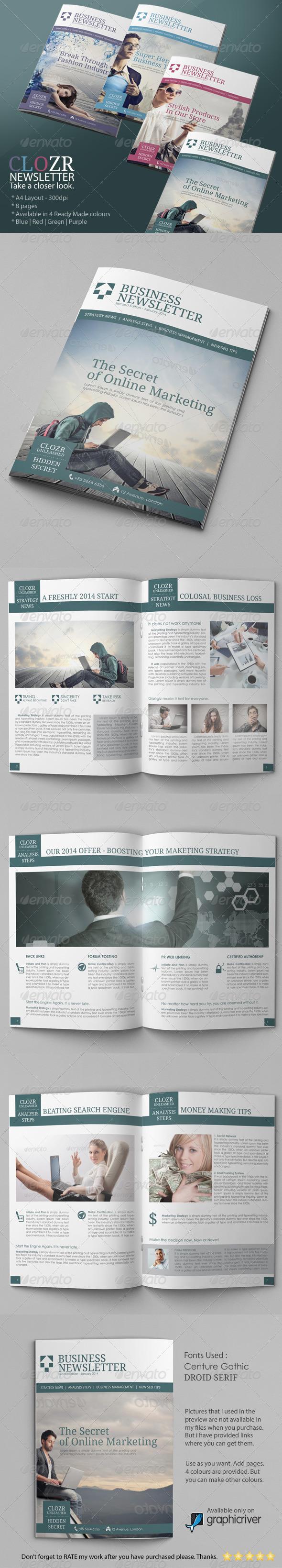 GraphicRiver Business Newsletter Vol V 6570797