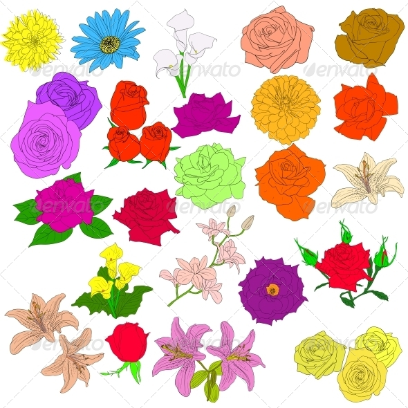 GraphicRiver Set of Flowers 6575675