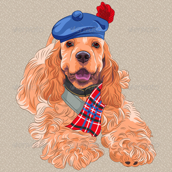 American Cocker Spaniel Dog - Animals Characters