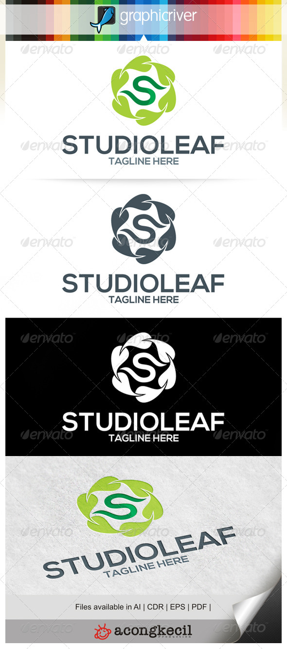 GraphicRiver Studio Leaf 6581412