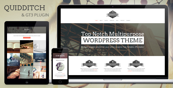 Quidditch - One Page WordPress Theme