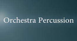 Orchestra Percussion