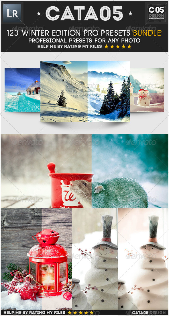 GraphicRiver 123 Winter Edition Pro Presets Bundle 6587689