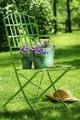 Green garden chair - PhotoDune Item for Sale