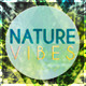 Nature Vibes Flyer Template - GraphicRiver Item for Sale