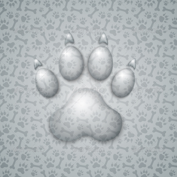 GraphicRiver Trace Dog in the Form of Droplets Water 6593299