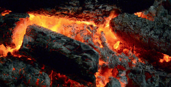 Firewood And Ashes Ablaze
