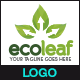 EcoLeaf - Logo Template - GraphicRiver Item for Sale
