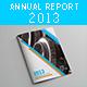 Annual Report 2013 - GraphicRiver Item for Sale