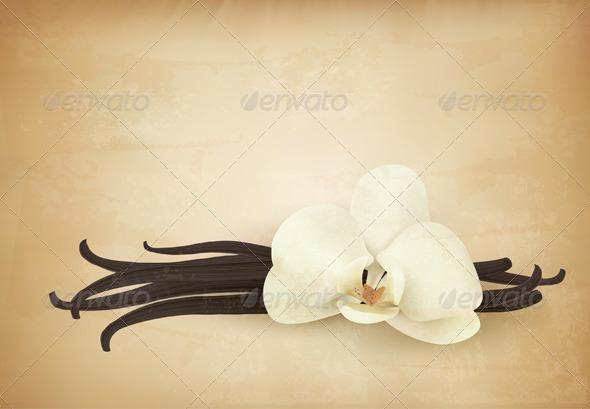 GraphicRiver Vanilla Retro Background 6612569