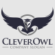 Clever Owl Logo Template - GraphicRiver Item for Sale