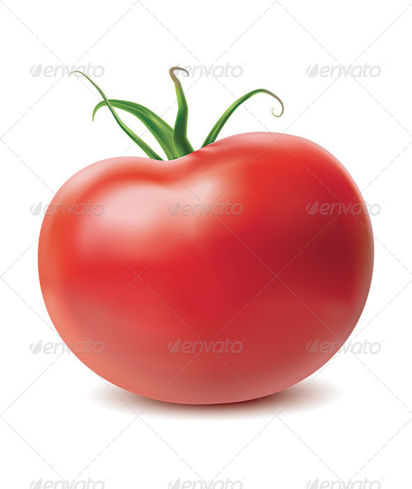 GraphicRiver Tomato Isolated on White Background 6619862
