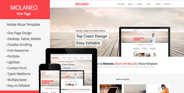 Molaneo - One Page Parallax Muse Template