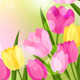 Spring Flowers Natural Backgrounds. - GraphicRiver Item for Sale