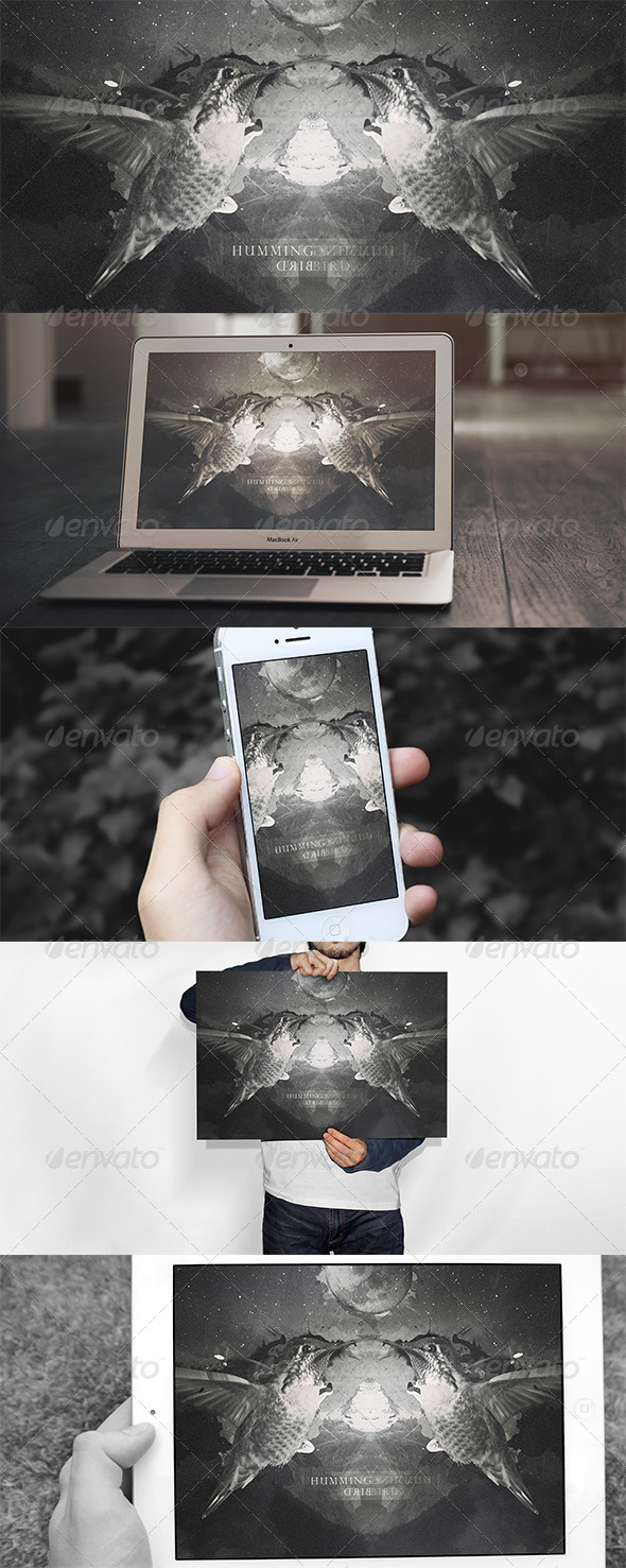 GraphicRiver Hummingbird Wallpaper 6629462