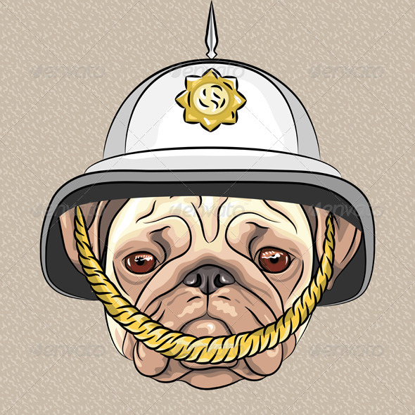 Dog Pug breed in British Helmet - Animals Characters