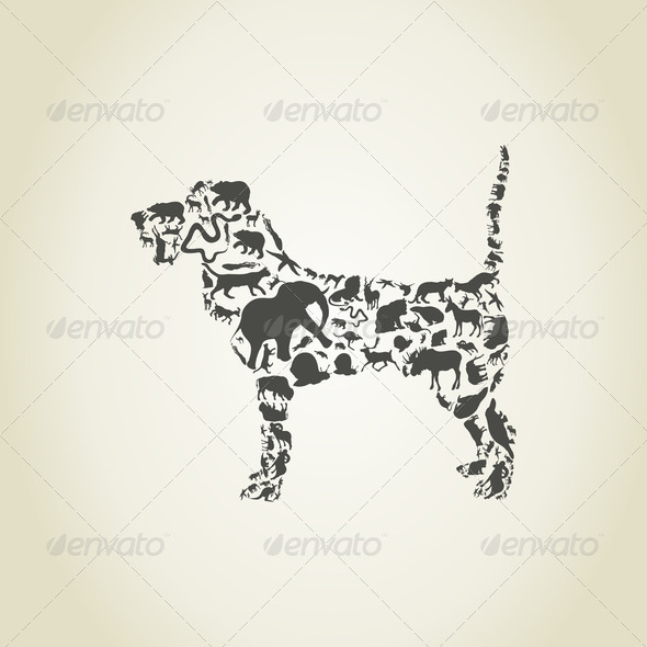 Dog an animal - Stock Photo - Images