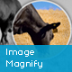 Image Magnify WordPress Plugin - CodeCanyon Item for Sale