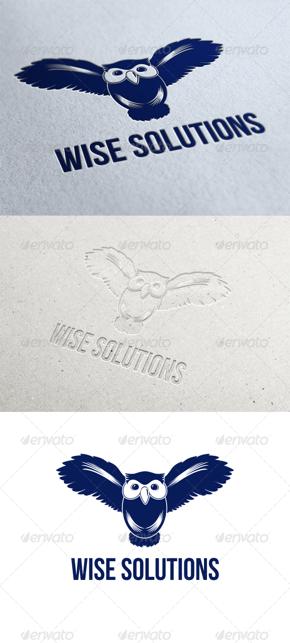GraphicRiver Wise Solutions Logo Template 6636601