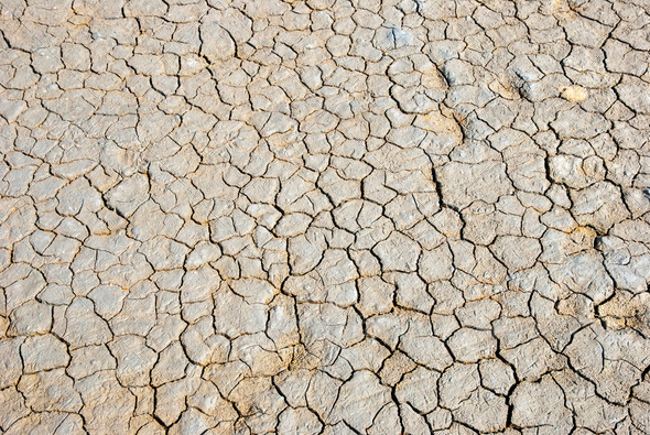 Dry cracked land - Stock Photo - Images