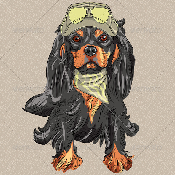 GraphicRiver Hipster Dog Cavalier King Charles Spaniel 6641345