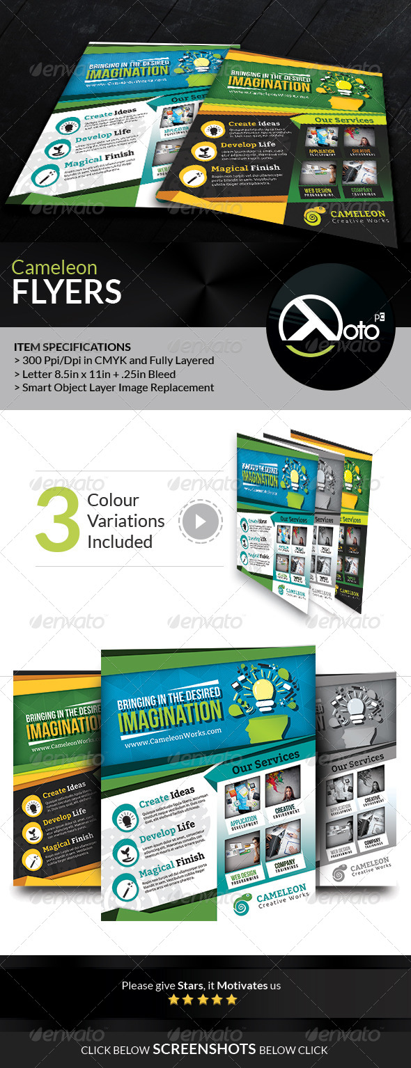 GraphicRiver Cameleon Works Flyers 6642447