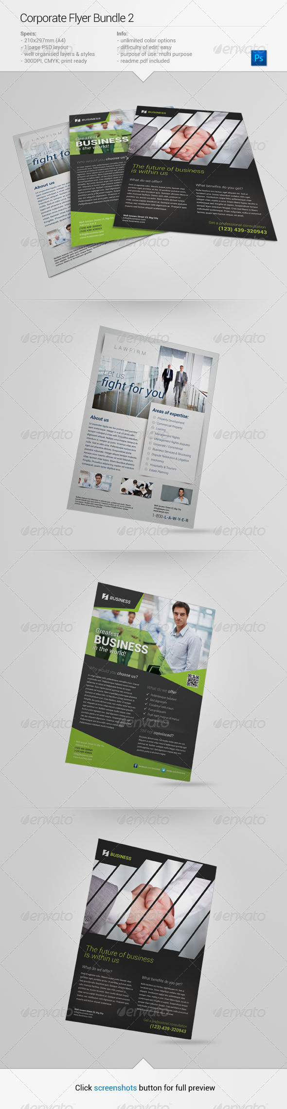 GraphicRiver Corporate Flyer Bundle 2 6643342