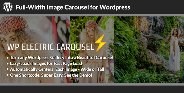 CodeCanyon WP Electric Carousel Full Width Lazy Load Slider 6554799
