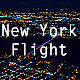 New York Flight - VideoHive Item for Sale