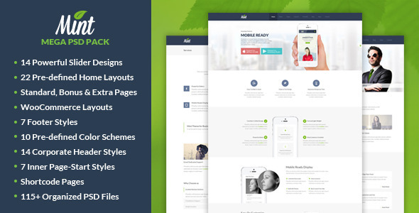 Mint - Mega PSD Pack - Corporate PSD Templates