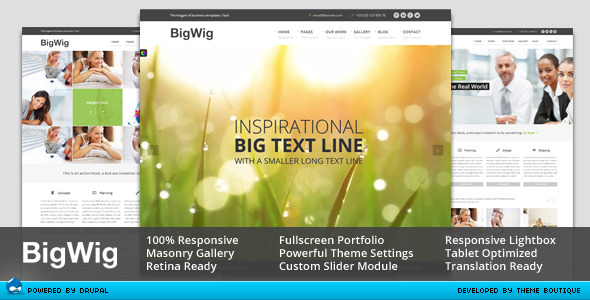 BigWig - Modern Corporate Drupal Theme
