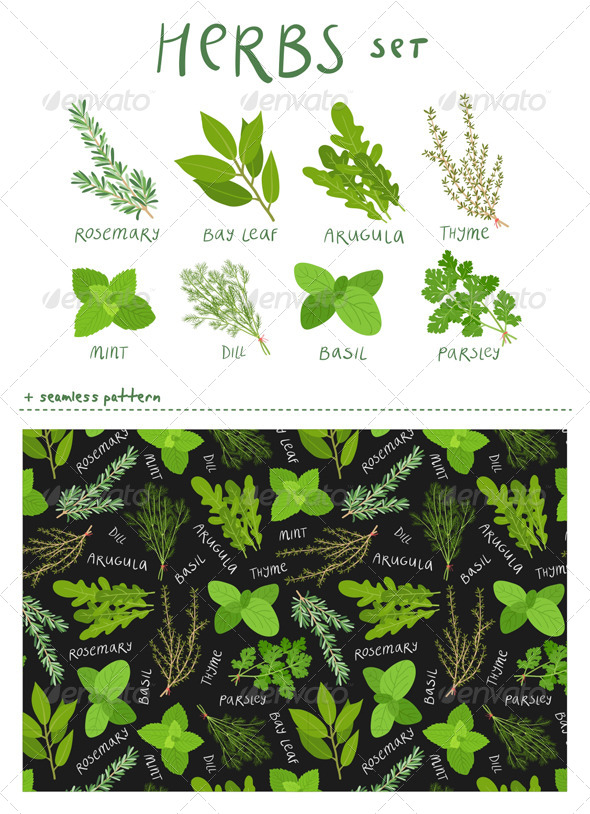 GraphicRiver Herbs Set 6662794