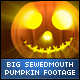 Halloween SewedMouth Face Big Pumpkins - VideoHive Item for Sale