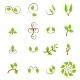 Download Vector Set of Green Leaves Design Elements