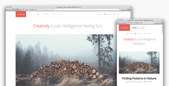 ThemeForest Develop Responsive WordPress HTML5 CSS3 Theme 6682345