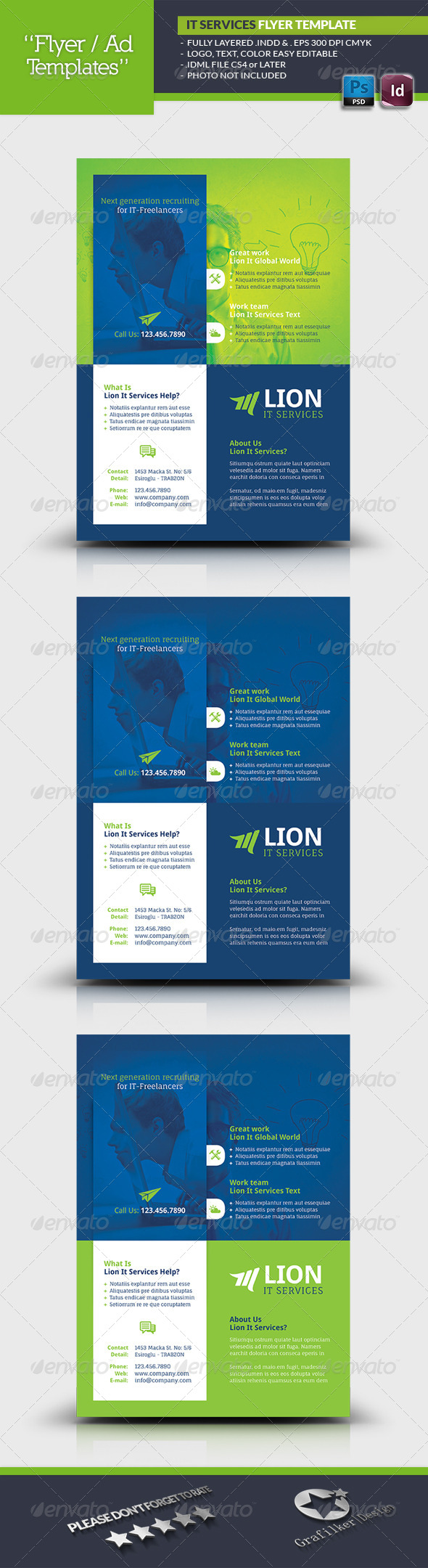 GraphicRiver IT Services Flyer Template 6683954
