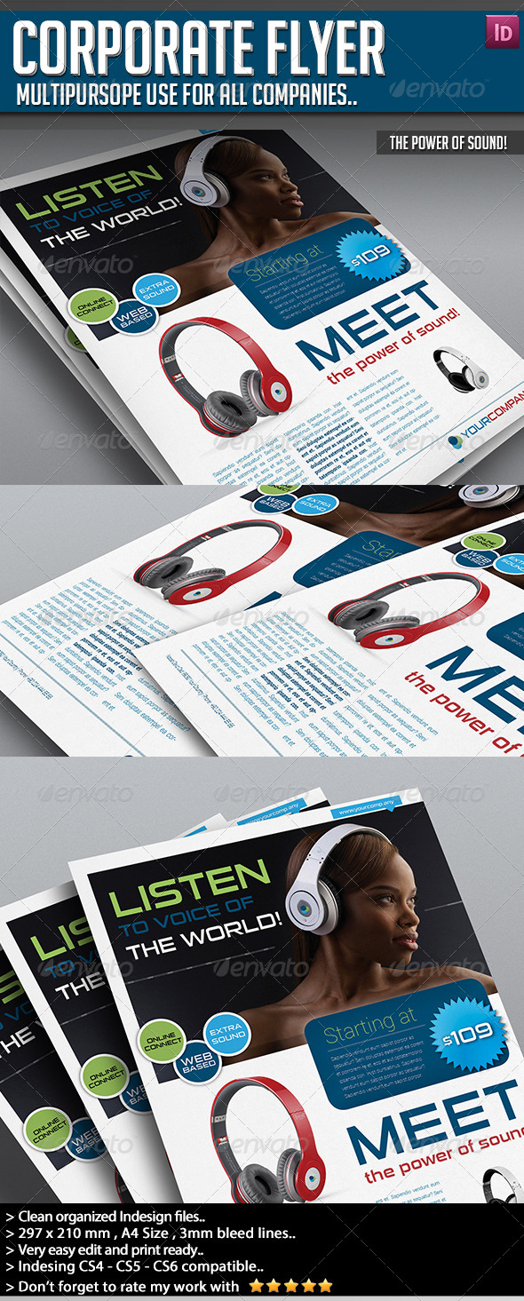 GraphicRiver Corporate Flyer The Power of Sound 6689159