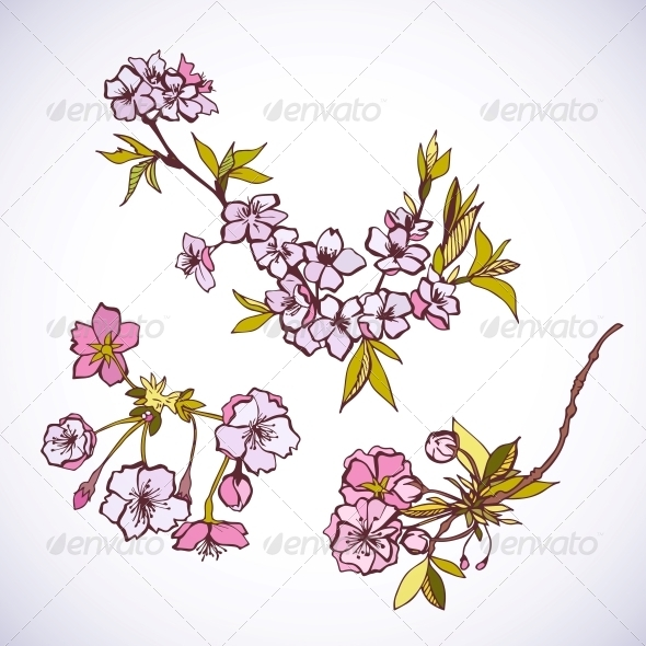 GraphicRiver Blossoming Sakura Decorative Elements 6694346